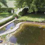 Teich im Sommer von oben