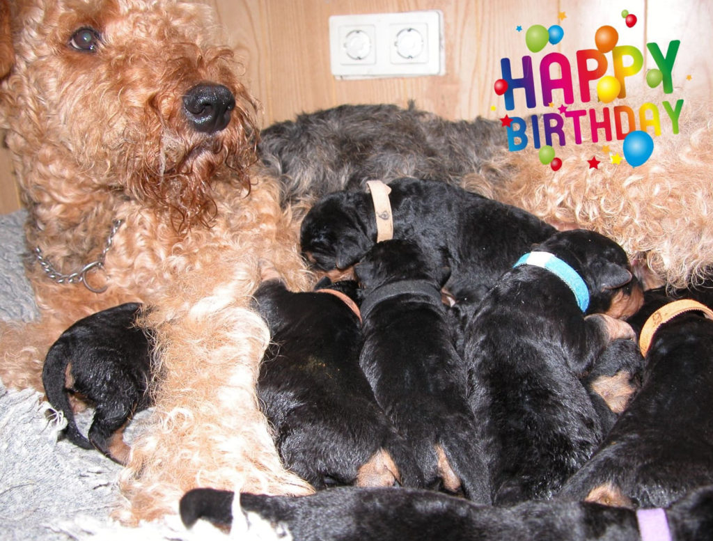 Mandy Geburt 17.09.17